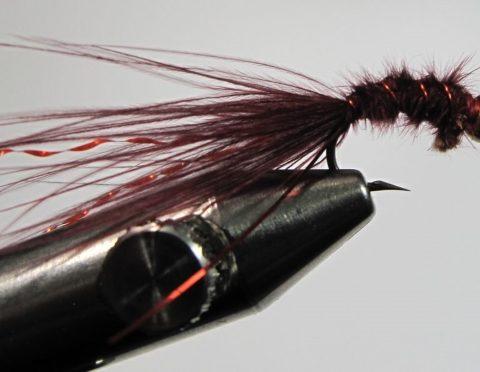 Maroon Micro Leech