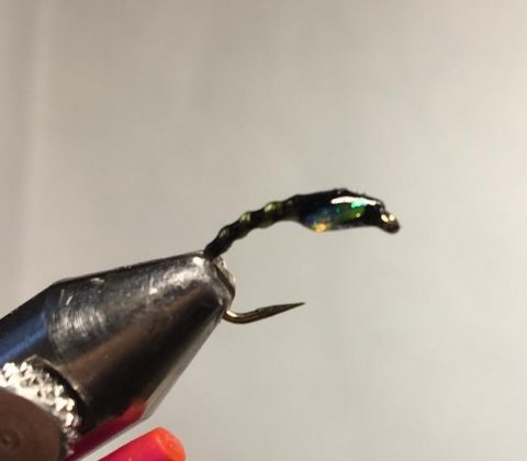 Light Brite Buzzer Chironomid