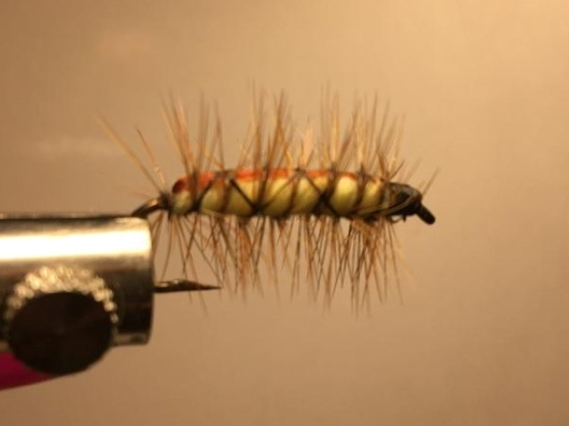 Anderson Stone Fly