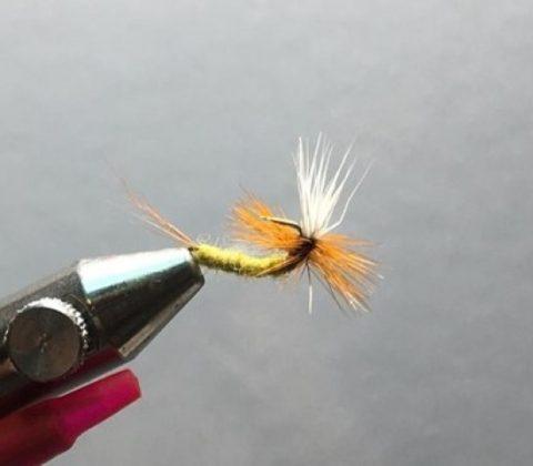 Water Wisp Mayfly