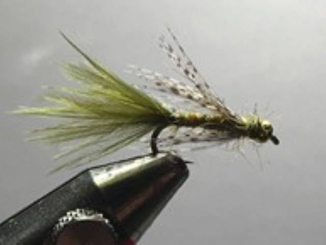 Gold Bead Damsel Fly