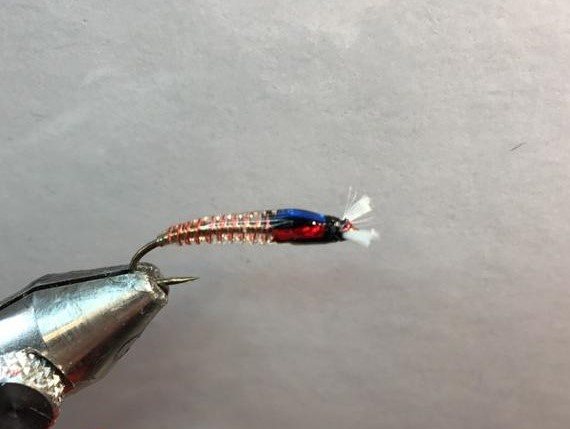 Clear Copper Rib Chironomid