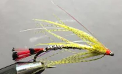Minnow Pattern